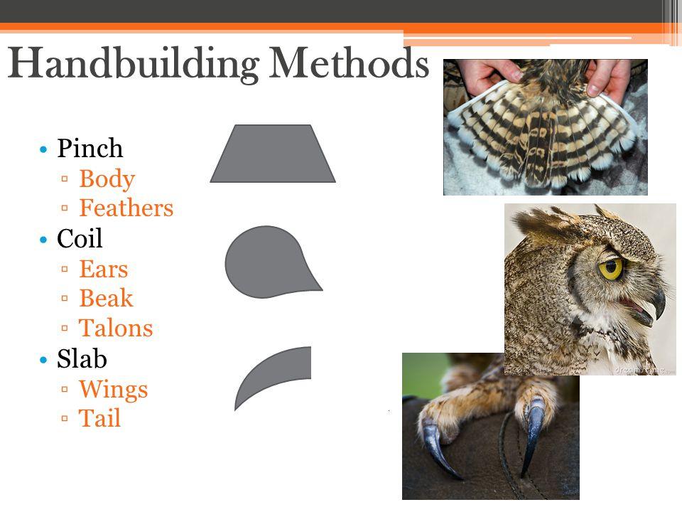 Pinch ▫Body ▫Feathers Coil ▫Ears ▫Beak ▫Talons Slab ▫Wings ▫Tail Handbuilding Methods