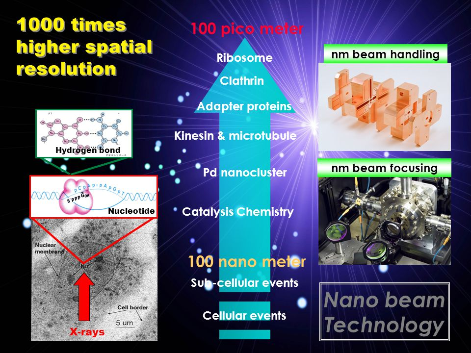 1000 times higher spatial resolution 1000 times higher spatial resolution 100 nano meter 100 pico meter Nano beam Technology Ribosome Catalysis Chemistry Pd nanocluster Cellular events Sub-cellular events Ribosome Adapter proteins Clathrin Kinesin & microtubule X-rays Nucleotide Hydrogen bond nm beam focusing nm beam handling