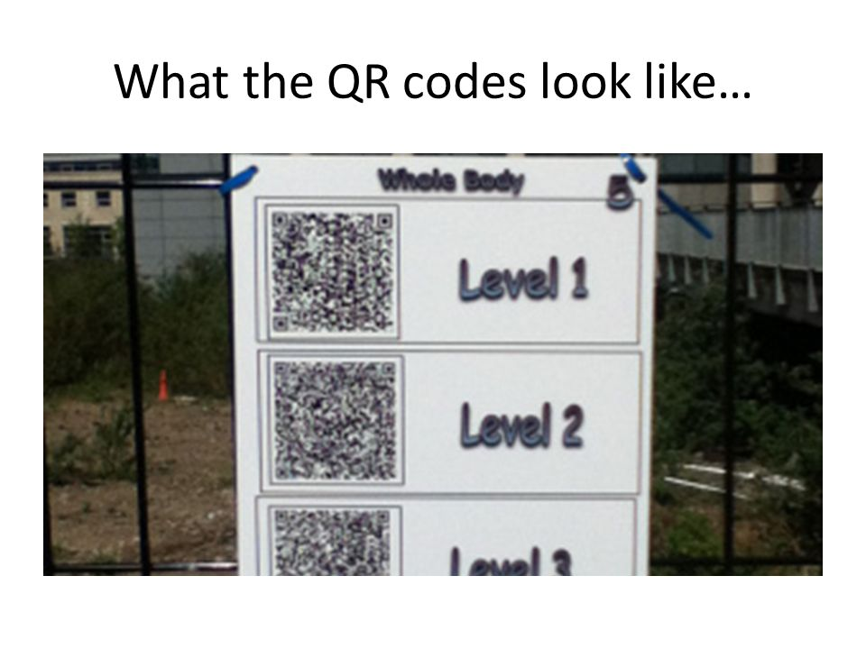 What the QR codes look like…