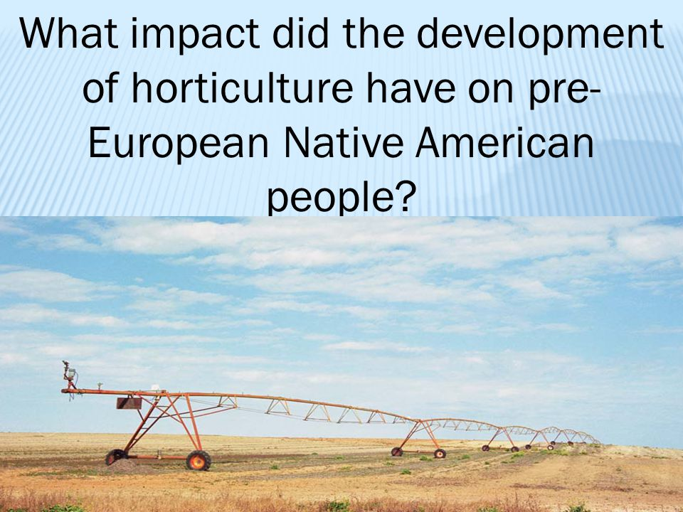 What impact did the development of horticulture have on pre- European Native American people?