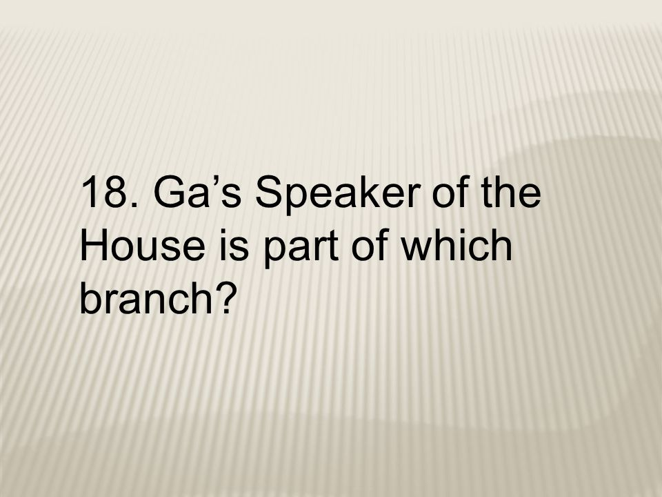 18. Ga's Speaker of the House is part of which branch?