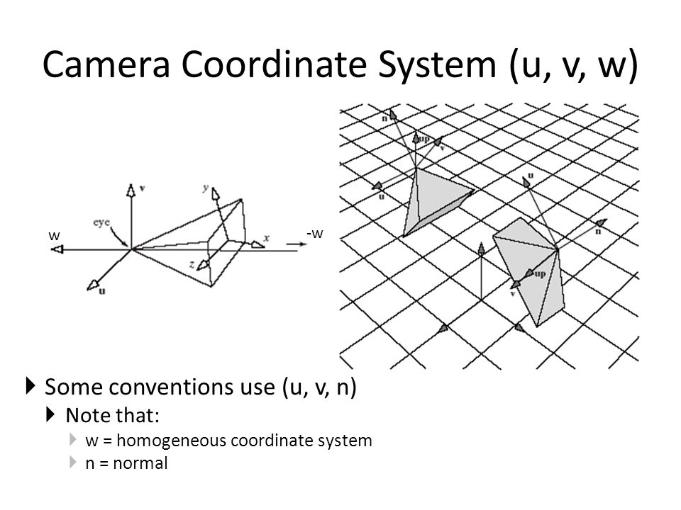 Camera Coordinate System (u, v, w)  Some conventions use (u, v, n)  Note that:  w = homogeneous coordinate system  n = normal -w w