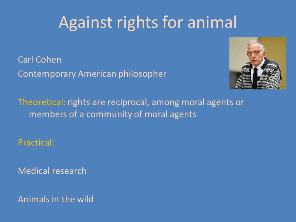 Against rights for animal Carl Cohen Contemporary American philosopher Theoretical: rights are reciprocal, among moral agents or members of a communit