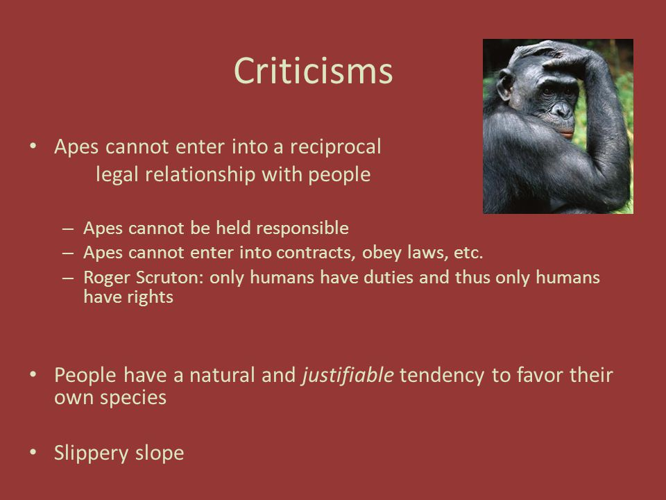 Criticisms Apes cannot enter into a reciprocal legal relationship with people – Apes cannot be held responsible – Apes cannot enter into contracts, obey laws, etc.
