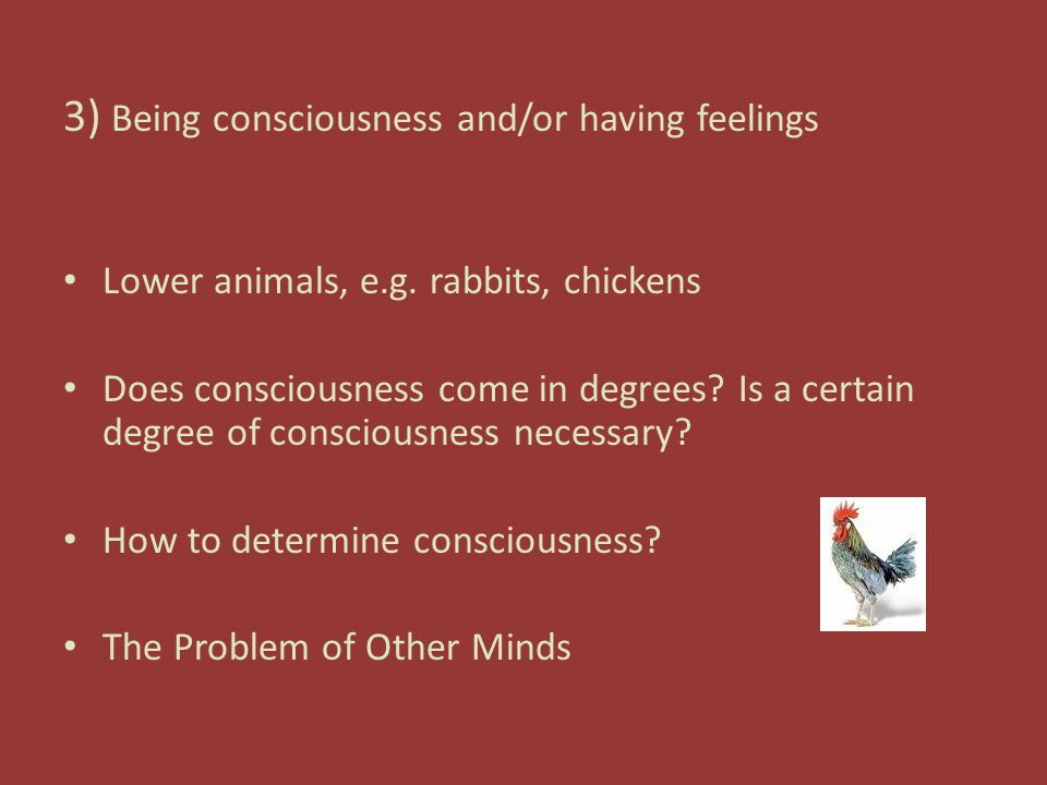 3) Being consciousness and/or having feelings Lower animals, e.g.