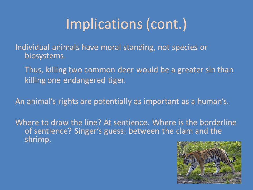 Implications (cont.) Individual animals have moral standing, not species or biosystems.