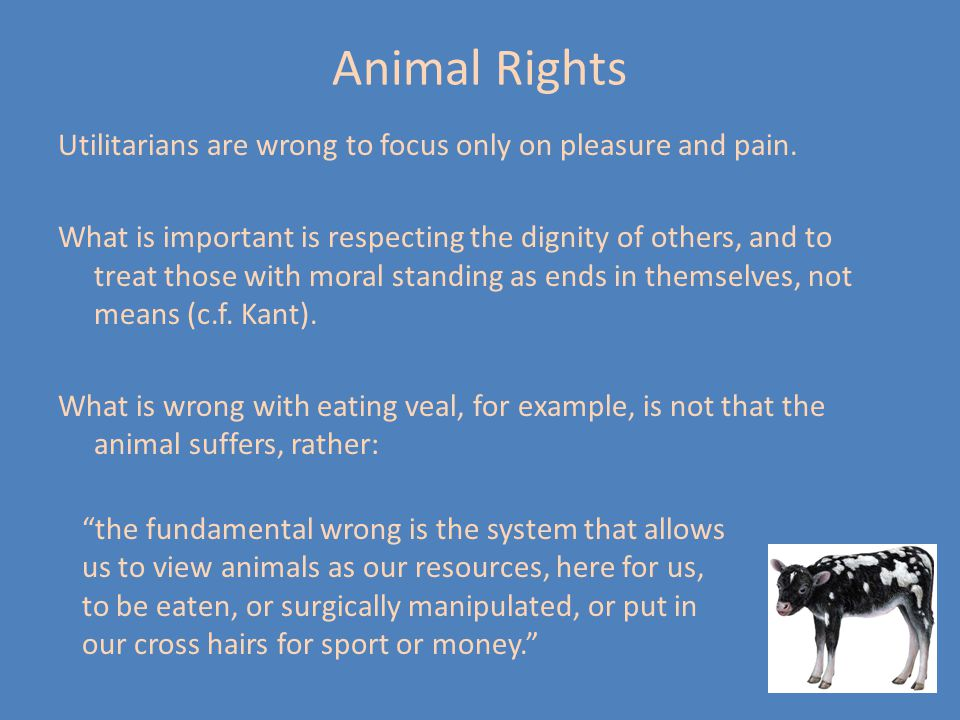 Animal Rights Utilitarians are wrong to focus only on pleasure and pain.