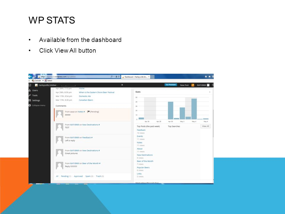 WP STATS Available from the dashboard Click View All button