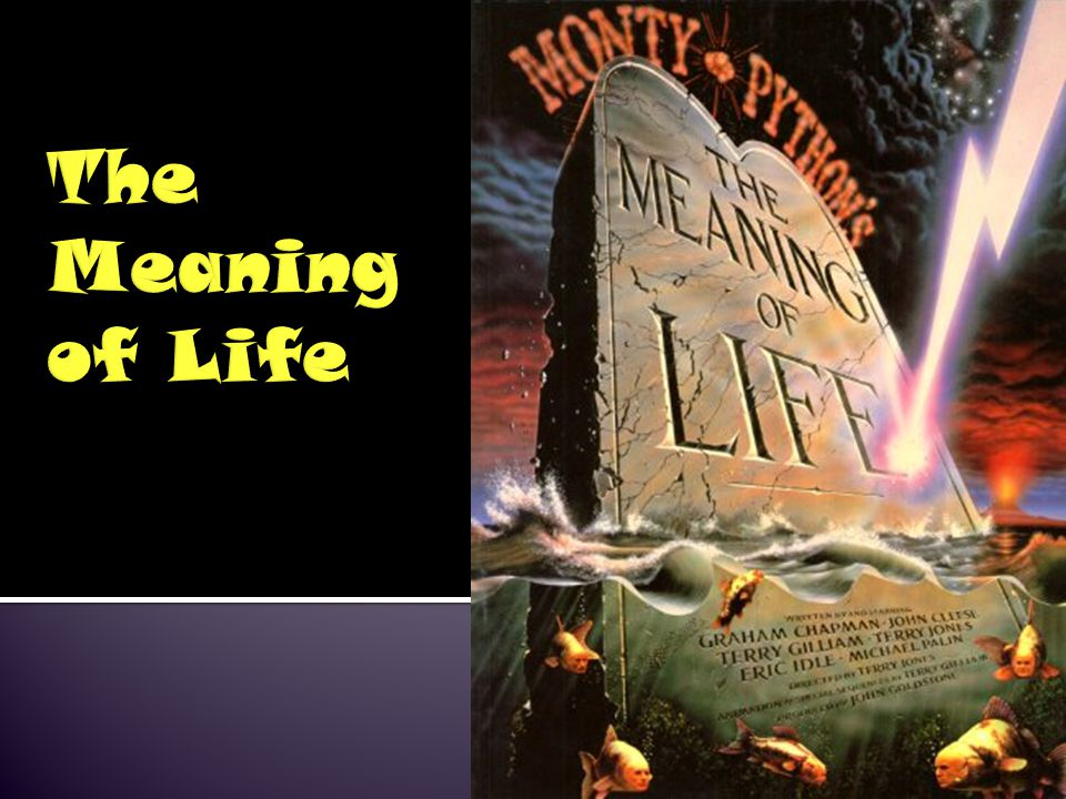 Many of the topics we have discussed relate somehow to the meaning of life: Is life meaningful if we live in a simulated world (e.g.