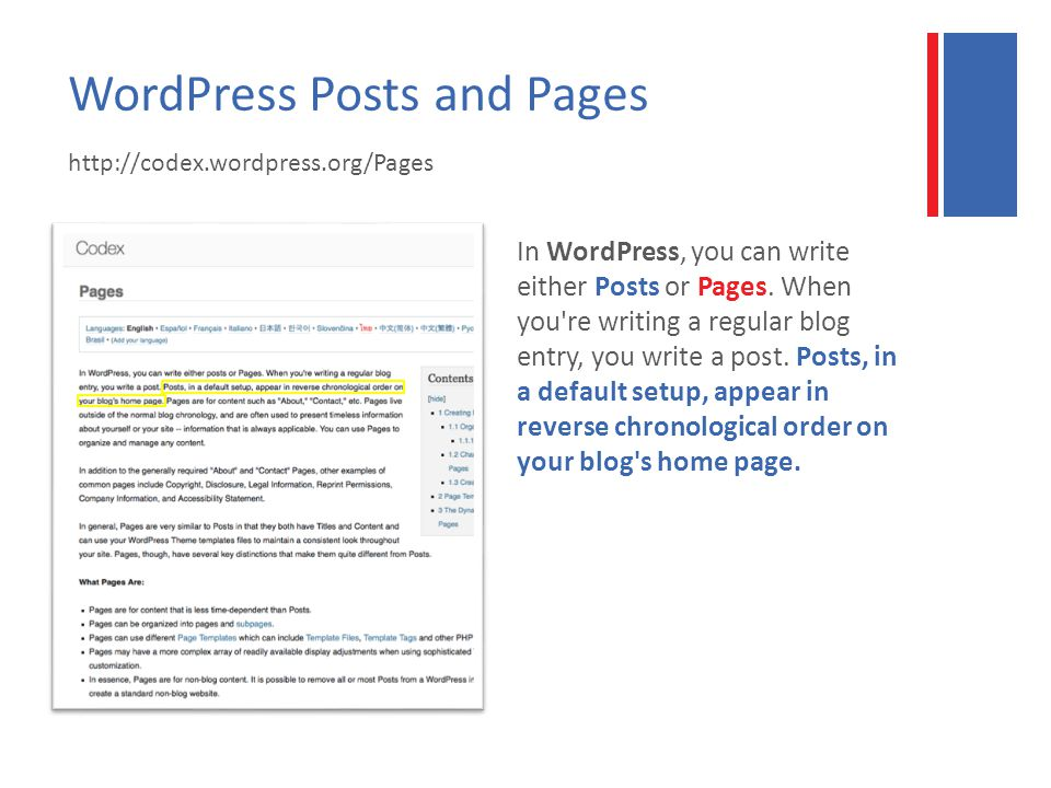 WordPress Posts and Pages   In WordPress, you can write either Posts or Pages.