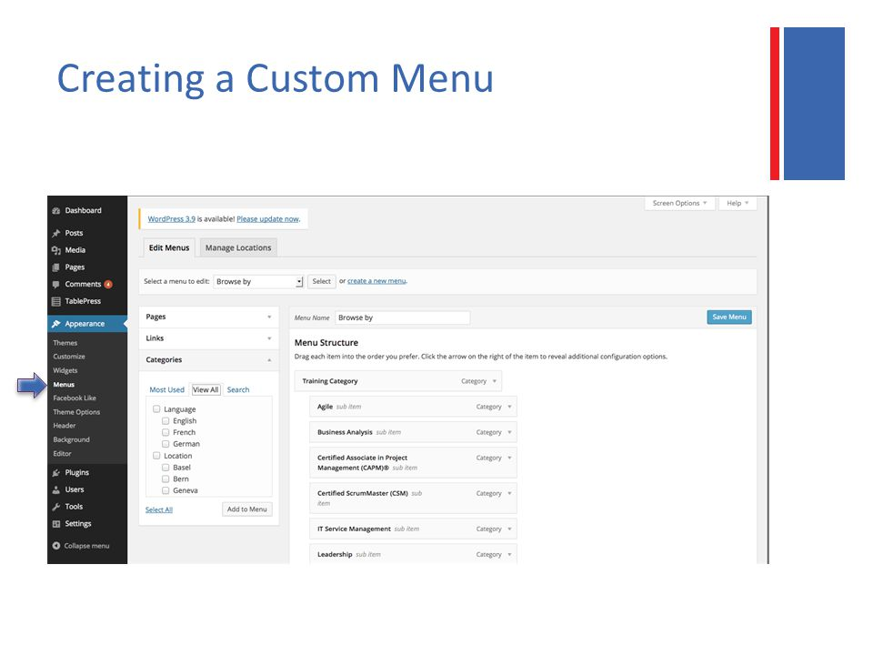 Creating a Custom Menu
