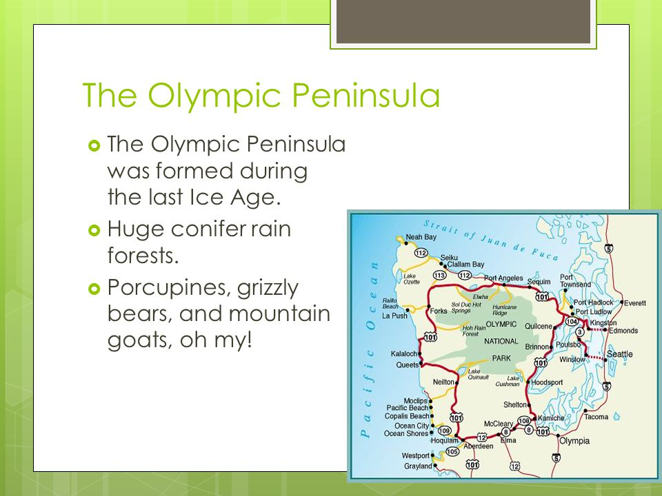 The Olympic Peninsula  The Olympic Peninsula was formed during the last Ice Age.
