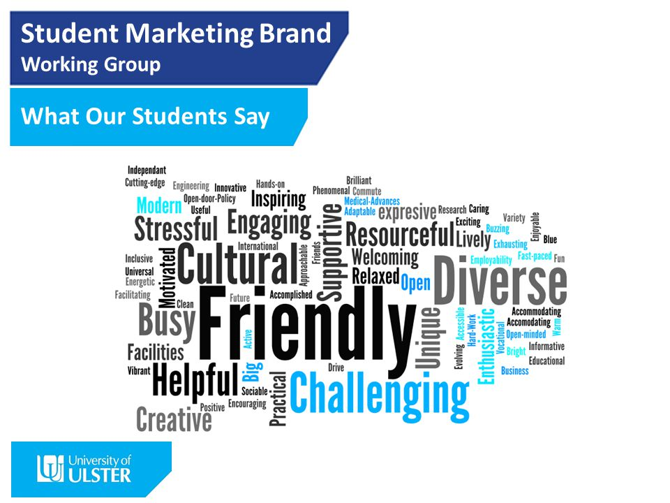 Student Marketing Brand Working Group What Our Students Say