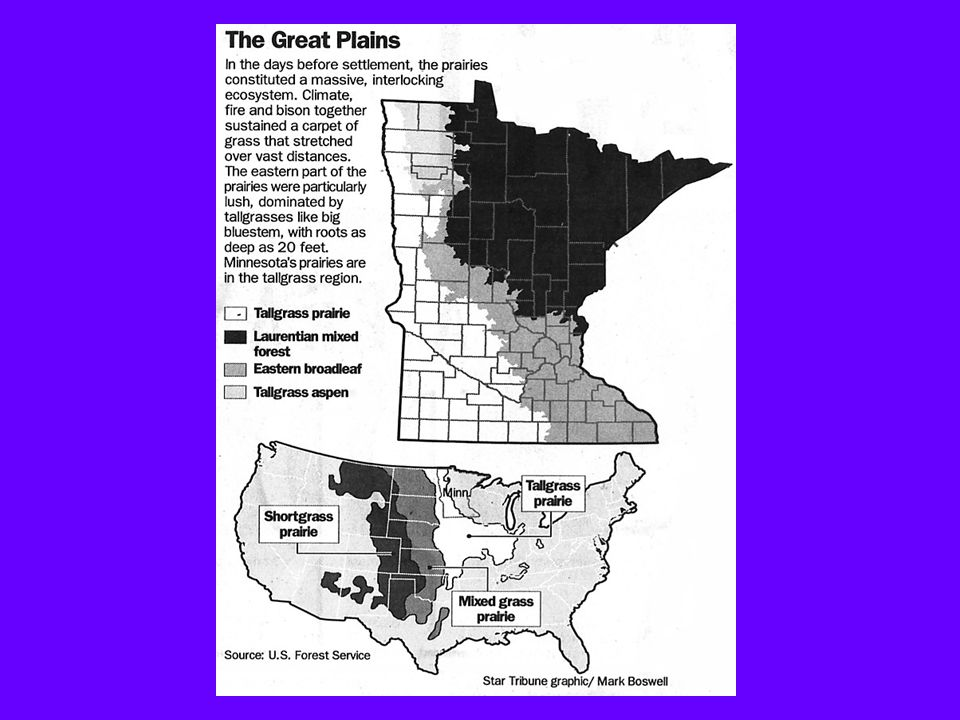 1)Natural environment drastically altered by human activities Big Woods gone Prairies gone Land increasingly devoted to residential developments Changes in Wright County 1850 to the Present 2)Technology (mechanization) has dramatically changed county agriculture