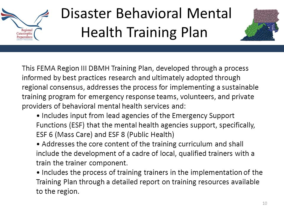 Disaster Behavioral Mental Health Training Plan 10 This FEMA Region III DBMH Training Plan, developed through a process informed by best practices research and ultimately adopted through regional consensus, addresses the process for implementing a sustainable training program for emergency response teams, volunteers, and private providers of behavioral mental health services and: Includes input from lead agencies of the Emergency Support Functions (ESF) that the mental health agencies support, specifically, ESF 6 (Mass Care) and ESF 8 (Public Health) Addresses the core content of the training curriculum and shall include the development of a cadre of local, qualified trainers with a train the trainer component.