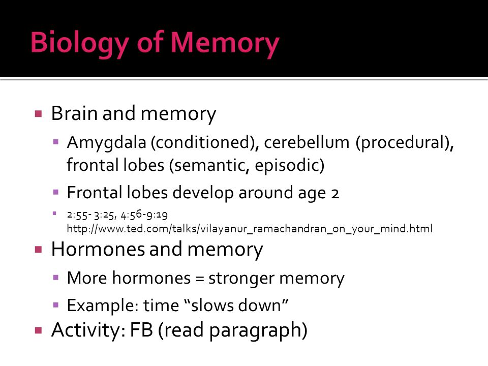  Brain and memory  Amygdala (conditioned), cerebellum (procedural), frontal lobes (semantic, episodic)  Frontal lobes develop around age 2  2:55- 3:25, 4:56-9:19 http://www.ted.com/talks/vilayanur_ramachandran_on_your_mind.html  Hormones and memory  More hormones = stronger memory  Example: time slows down  Activity: FB (read paragraph)