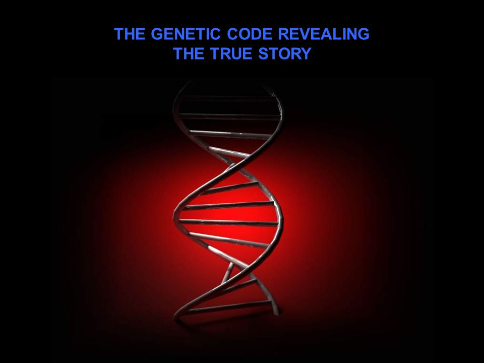 THE GENETIC CODE REVEALING THE TRUE STORY