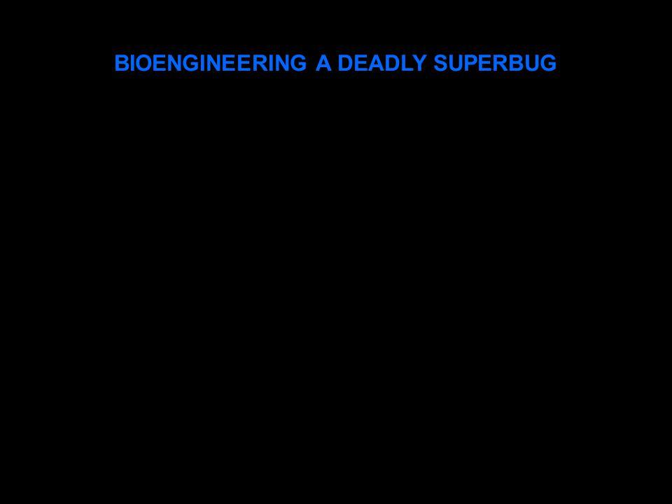 BIOENGINEERING A DEADLY SUPERBUG