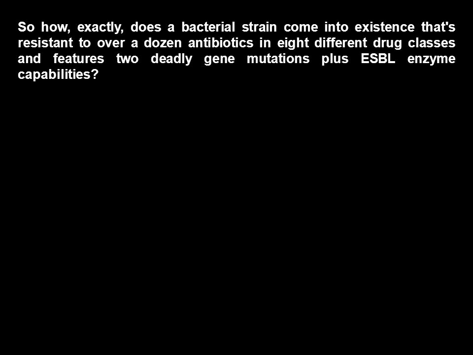So how, exactly, does a bacterial strain come into existence that s resistant to over a dozen antibiotics in eight different drug classes and features two deadly gene mutations plus ESBL enzyme capabilities?
