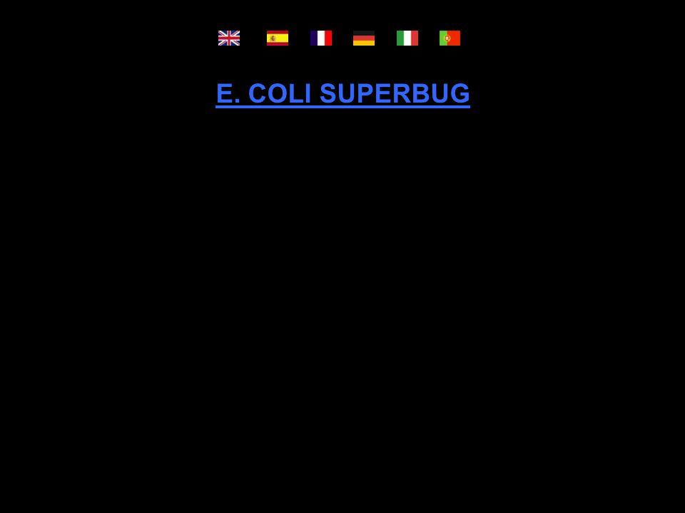 E. COLI SUPERBUG