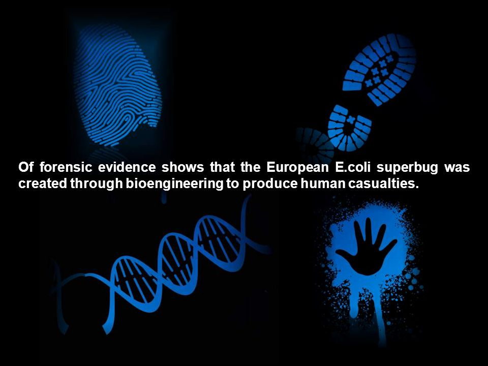 Of forensic evidence shows that the European E.coli superbug was created through bioengineering to produce human casualties.