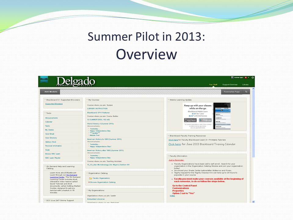 Summer Pilot in 2013: Overview