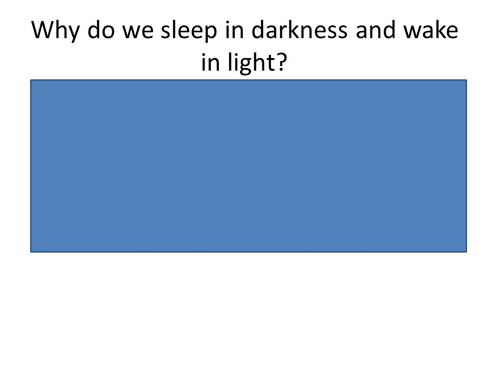 Why do we sleep in darkness and wake in light? Conserve energy Protect from predators (insensitive to movement, sensation and pain whilst asleep – so