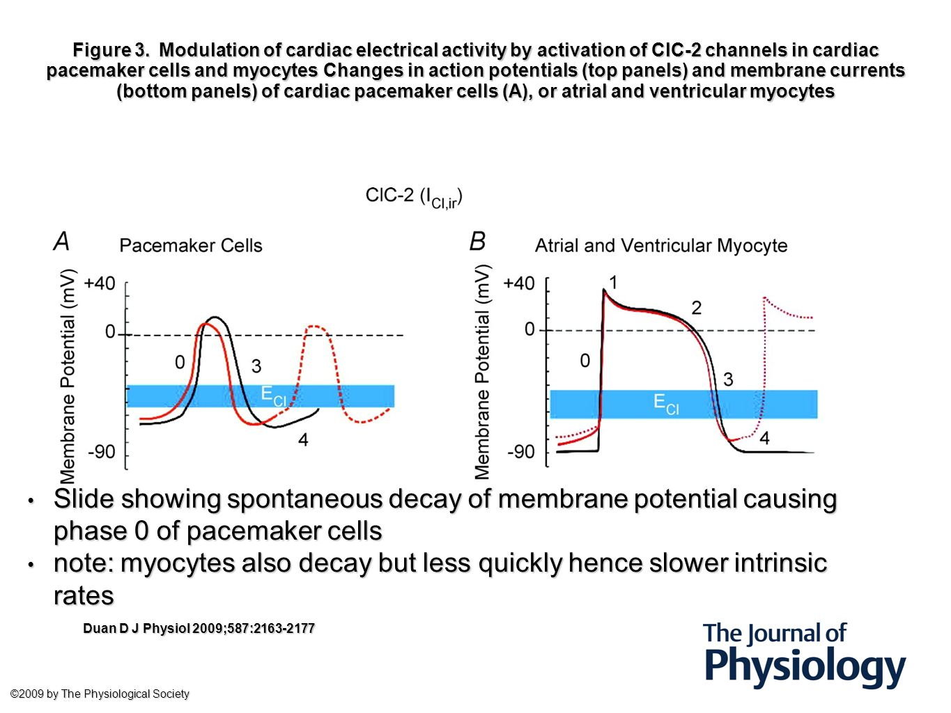 Transcutaneous pacing Mode Fixed or Demand Demand avoids R on T Energy as little as required +10mV Rate60-70bpm enough to maintain haemodynamics