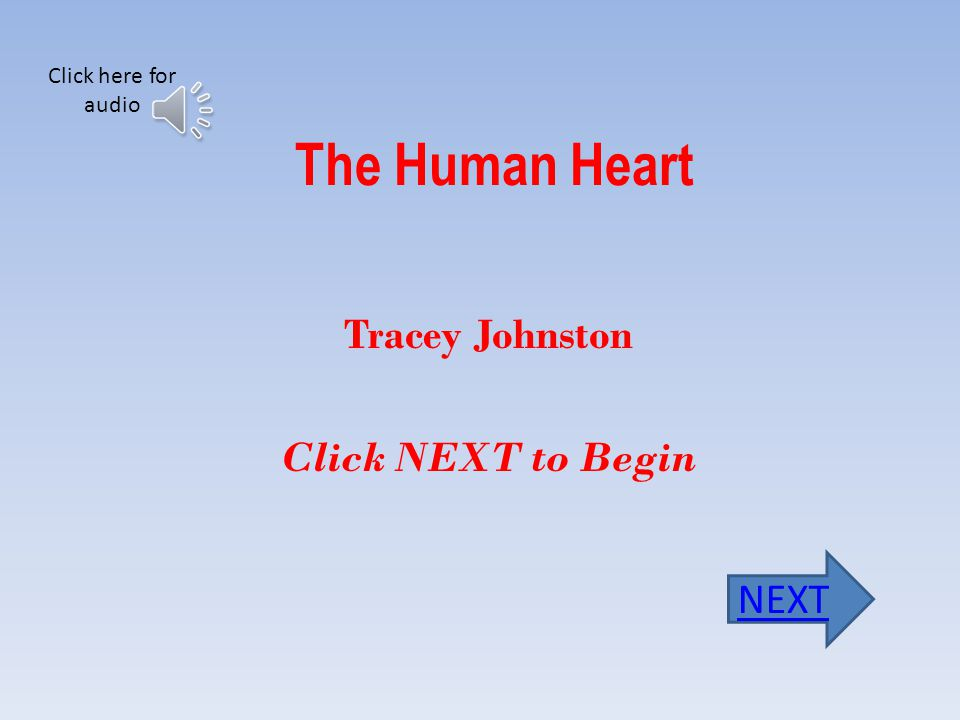The Human Heart Tracey Johnston Click NEXT to Begin NEXT Click here for audio