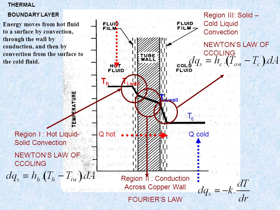 Q hot Q cold ThTh T i,wall T o,wall TcTc Region I : Hot Liquid- Solid Convection NEWTON'S LAW OF CCOLING Region II : Conduction Across Copper Wall FOU
