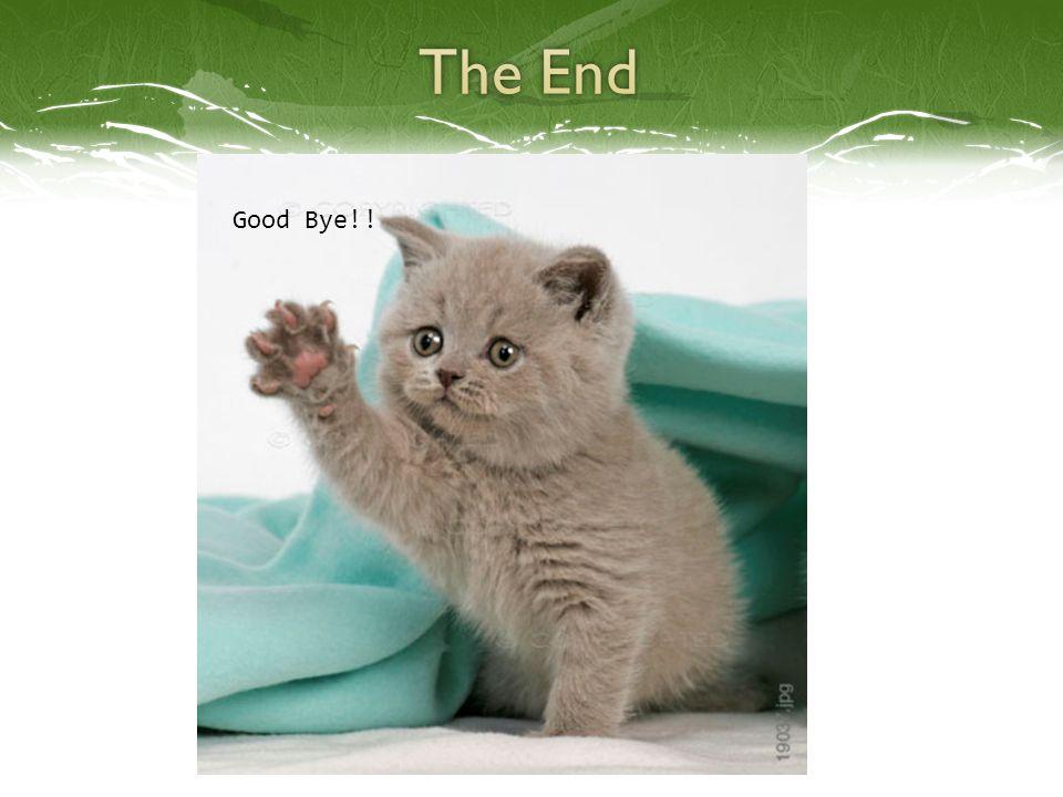 Good Bye!!