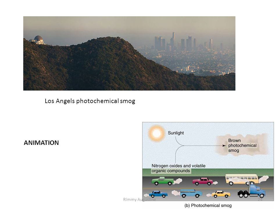 Los Angels photochemical smog 24Rimmy Augustine ANIMATION