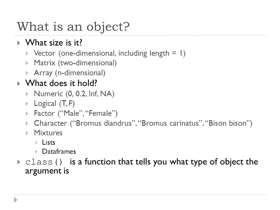What is an object. What size is it.