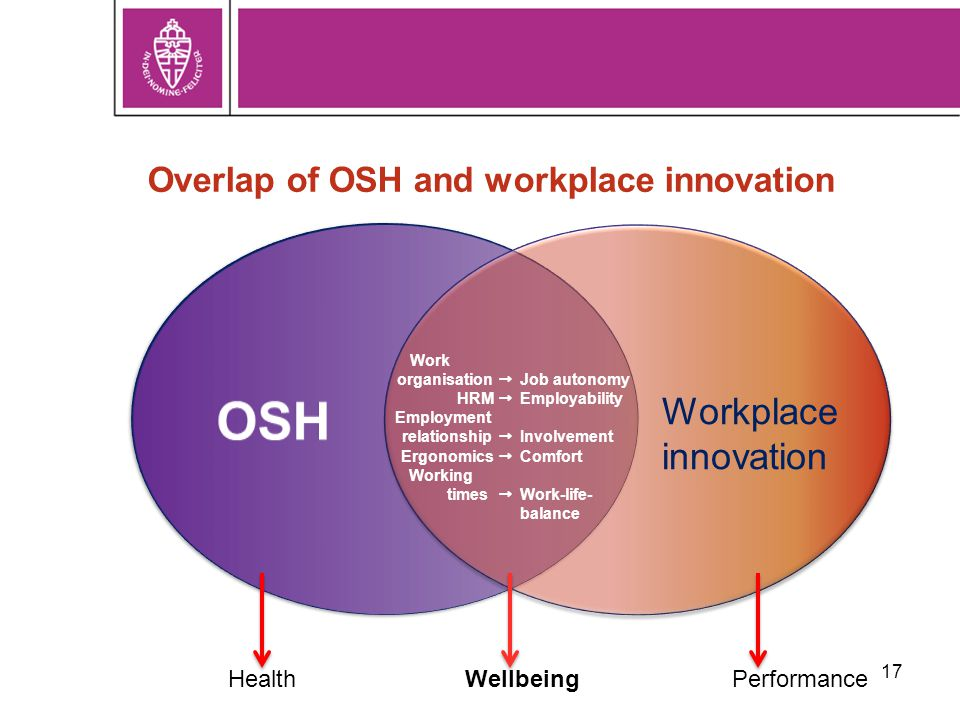 17 Overlap of OSH and workplace innovation Workplace innovation HealthWellbeingPerformance Work organisation  HRM  Employment relationship  Ergonomics  Working times  Job autonomy Employability Involvement Comfort Work-life- balance