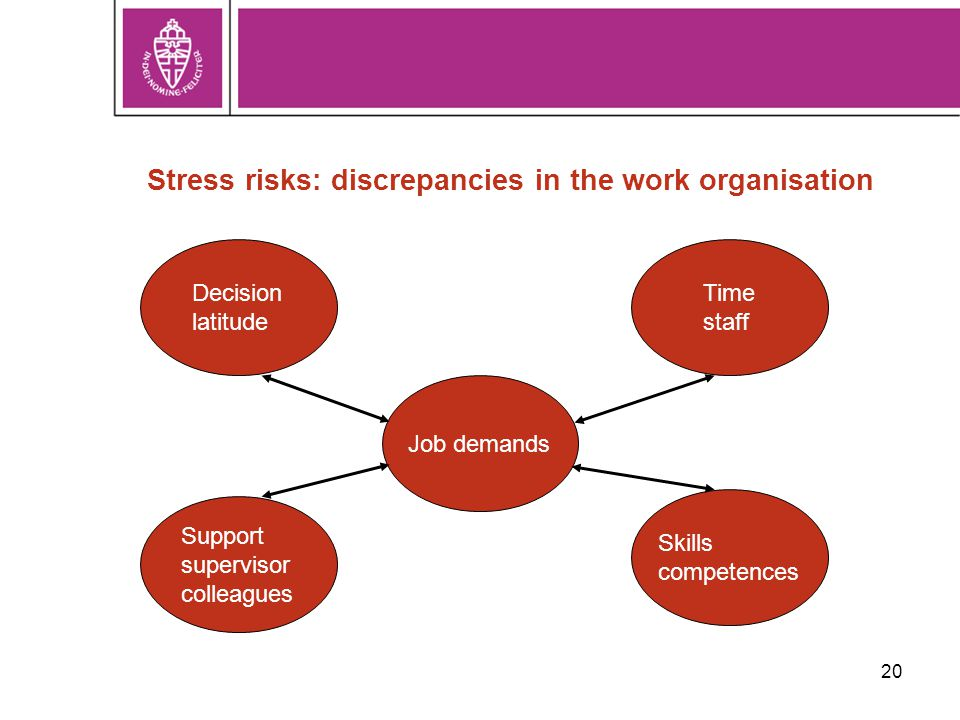 20 Stress risks: discrepancies in the work organisation Job demands Decision latitude Support supervisor colleagues Time staff Skills competences