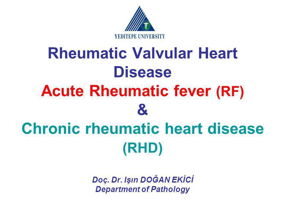 Rheumatic Valvular Heart Disease Acute Rheumatic fever (RF) & Chronic rheumatic heart disease (RHD) Doç. Dr. Işın DOĞAN EKİCİ Department of Pathology