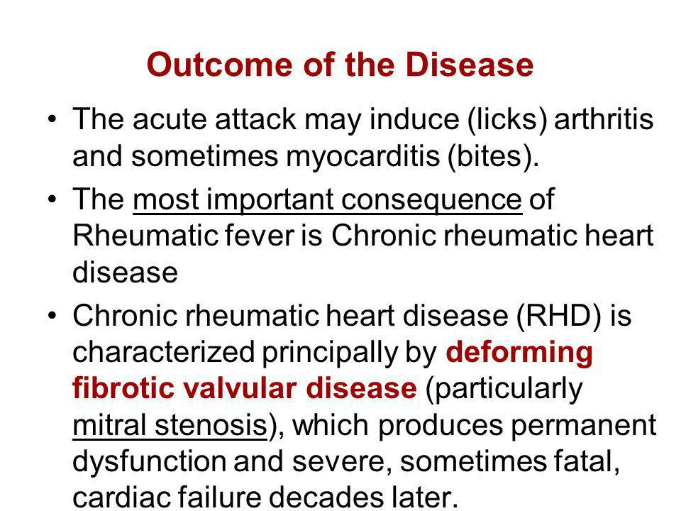 Outcome of the Disease The acute attack may induce (licks) arthritis and sometimes myocarditis (bites). The most important consequence of Rheumatic fe