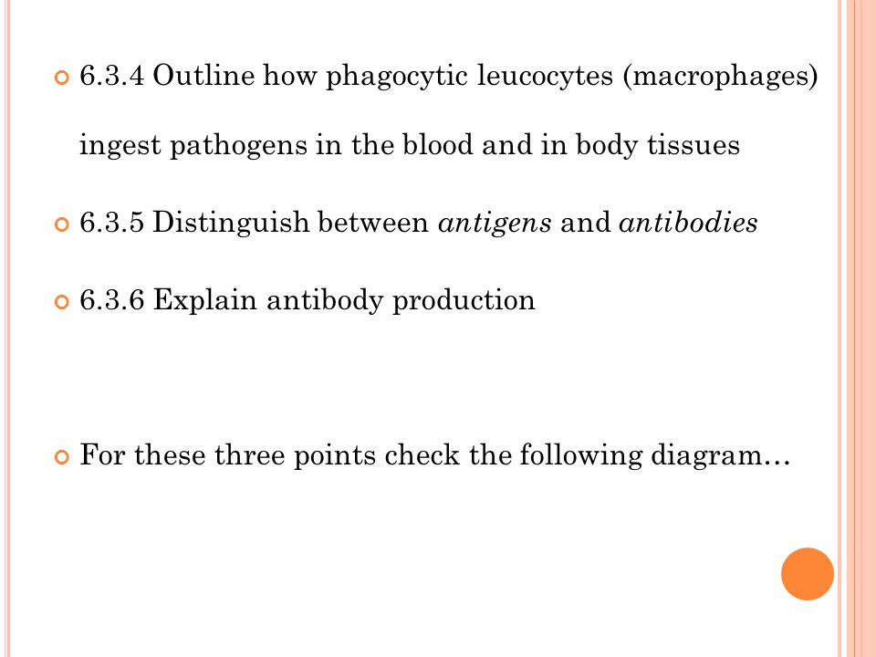 6.3.4 Outline how phagocytic leucocytes (macrophages) ingest pathogens in the blood and in body tissues 6.3.5 Distinguish between antigens and antibodies 6.3.6 Explain antibody production For these three points check the following diagram…