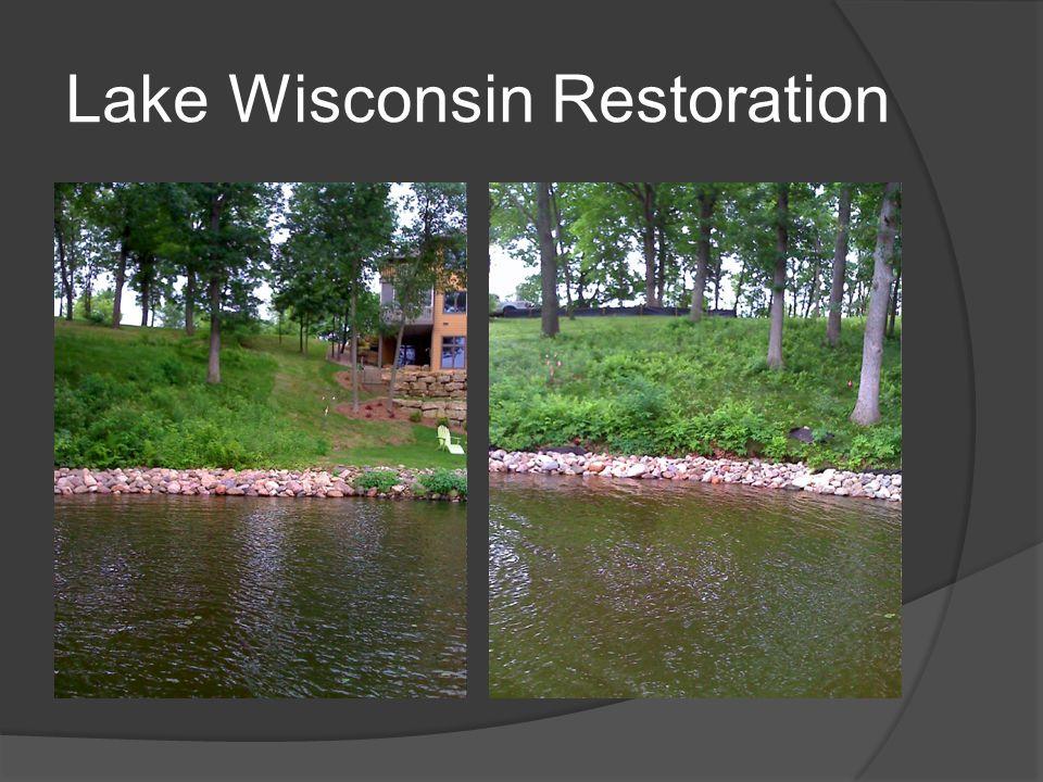 Lake Wisconsin Restoration