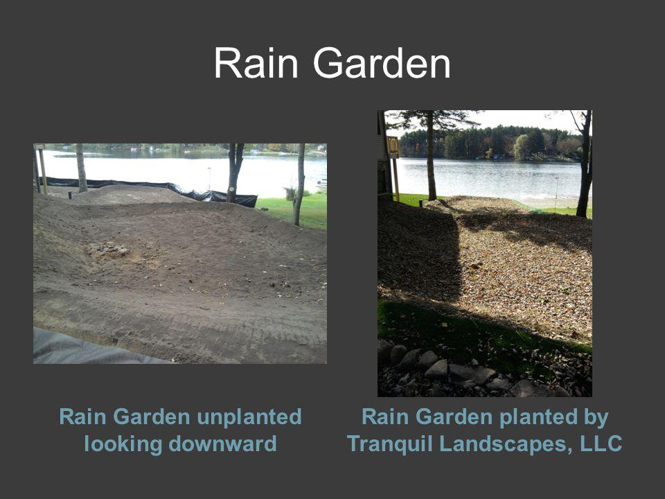 Rain Garden Rain Garden unplanted looking downward Rain Garden planted by Tranquil Landscapes, LLC