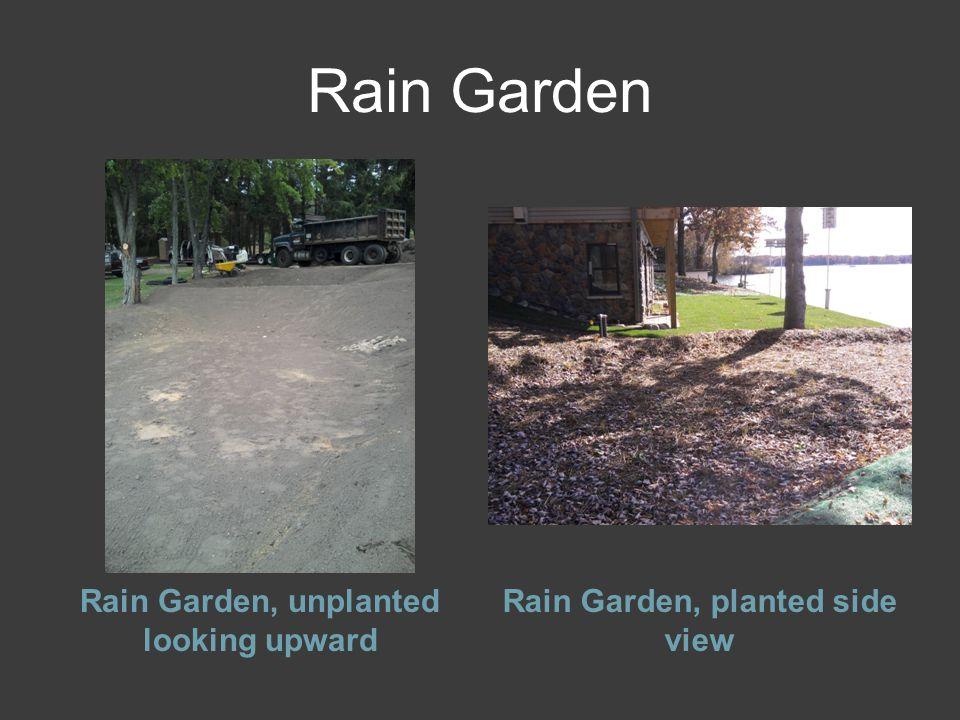 Rain Garden Rain Garden, unplanted looking upward Rain Garden, planted side view