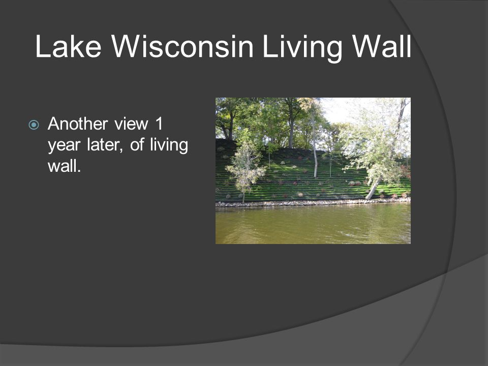 Lake Wisconsin Living Wall  Another view 1 year later, of living wall.