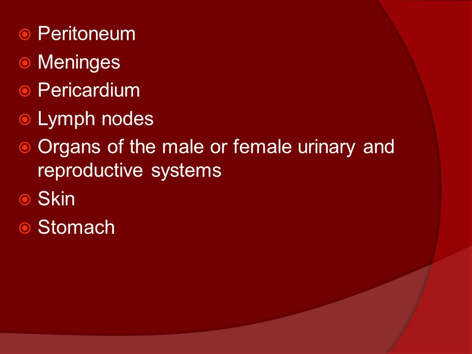  Peritoneum  Meninges  Pericardium  Lymph nodes  Organs of the male or female urinary and reproductive systems  Skin  Stomach
