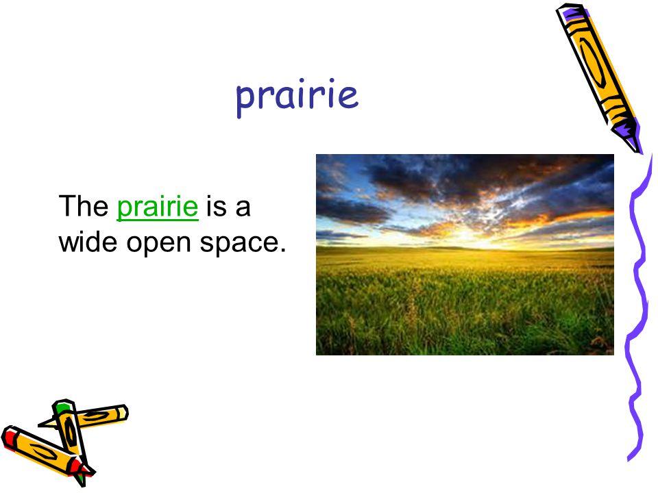 prairie The prairie is a wide open space.prairie