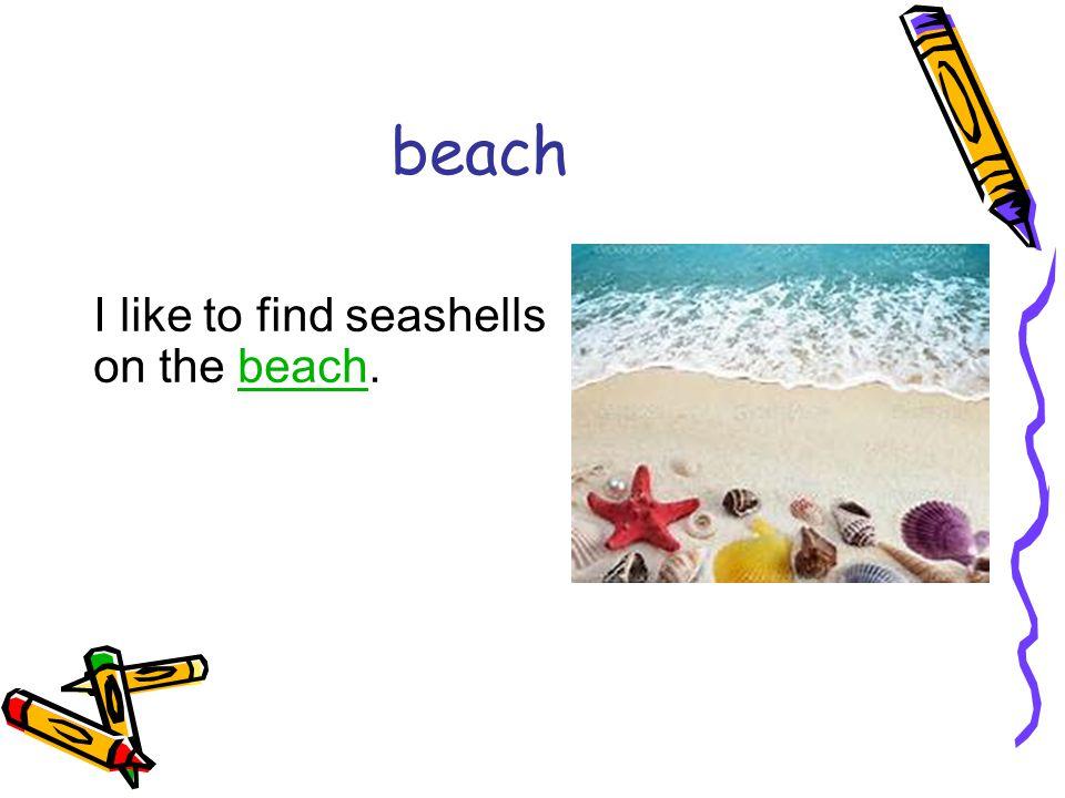 beach I like to find seashells on the beach.beach