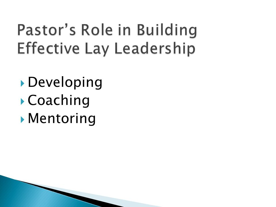 Developing  Coaching  Mentoring
