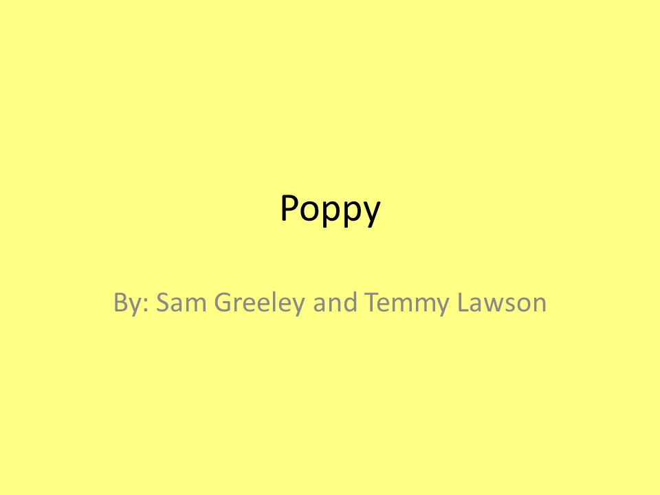 Poppy By: Sam Greeley and Temmy Lawson