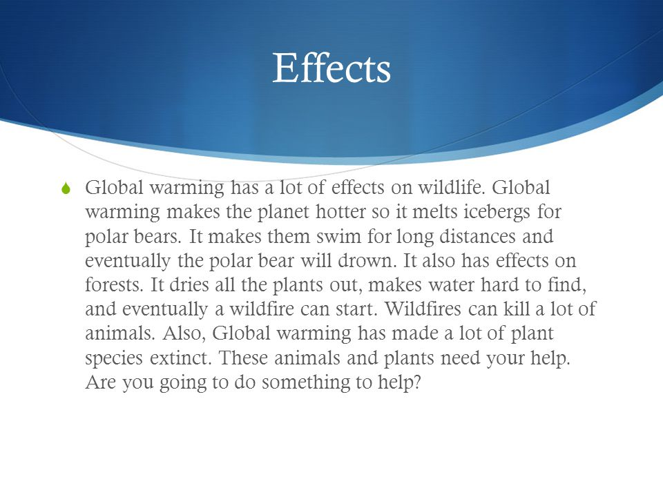 Effects  Global warming has a lot of effects on wildlife.