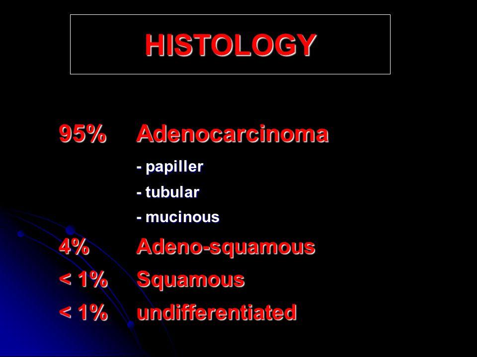 Tumors of Stomach Cengiz Pata, M.D Gastroenterology Department, Yeditepe University Istanbul