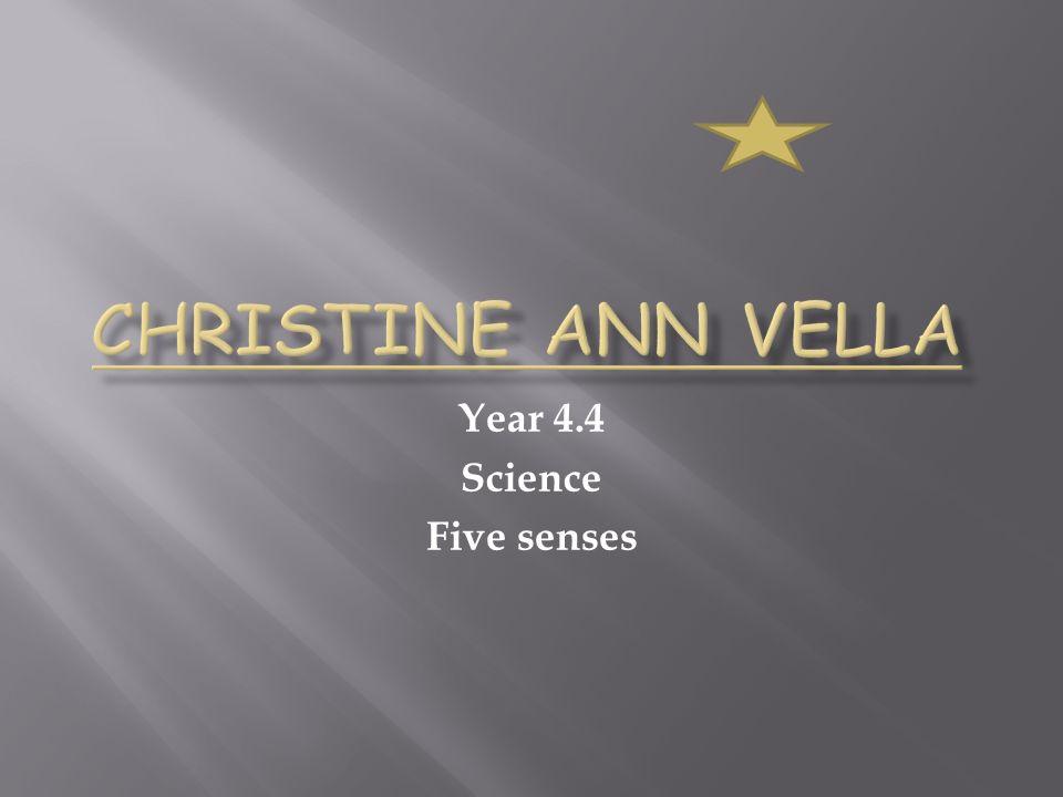 Year 4.4 Science Five senses